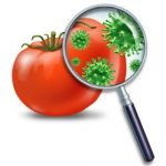Food Microbiology and Food Safety