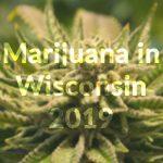The state of marijuana in Wisconsin in 2019