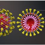 Don't Blame the Victims of Coronavirus