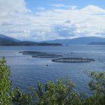 Trump gutting off-shore aquaculture regulations
