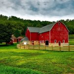 Rural Check-In: Wisconsin Farmers and Routes to Roots