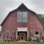 Life of Treasures: Inside Antique Store Vintage Pickins