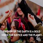 466 environmental groups urge Biden to appoint environmental champion to post